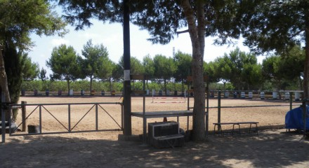 Pista Enganche, Clases, Doma y Pony Club