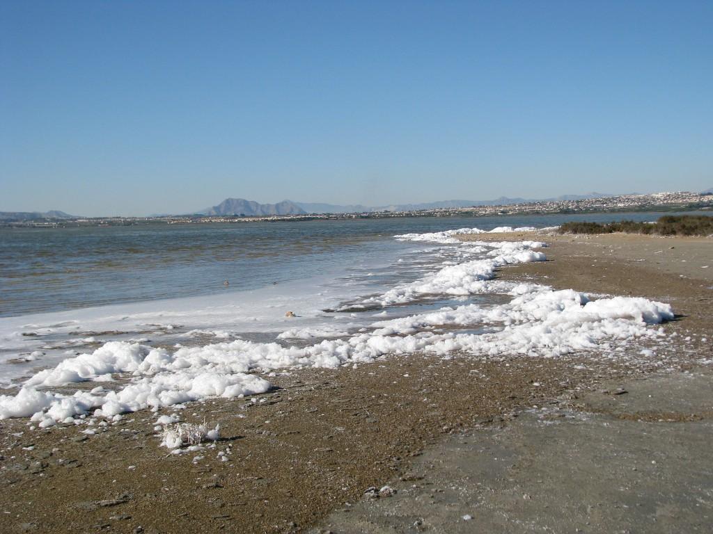 Laguna Salada de Torrevieja