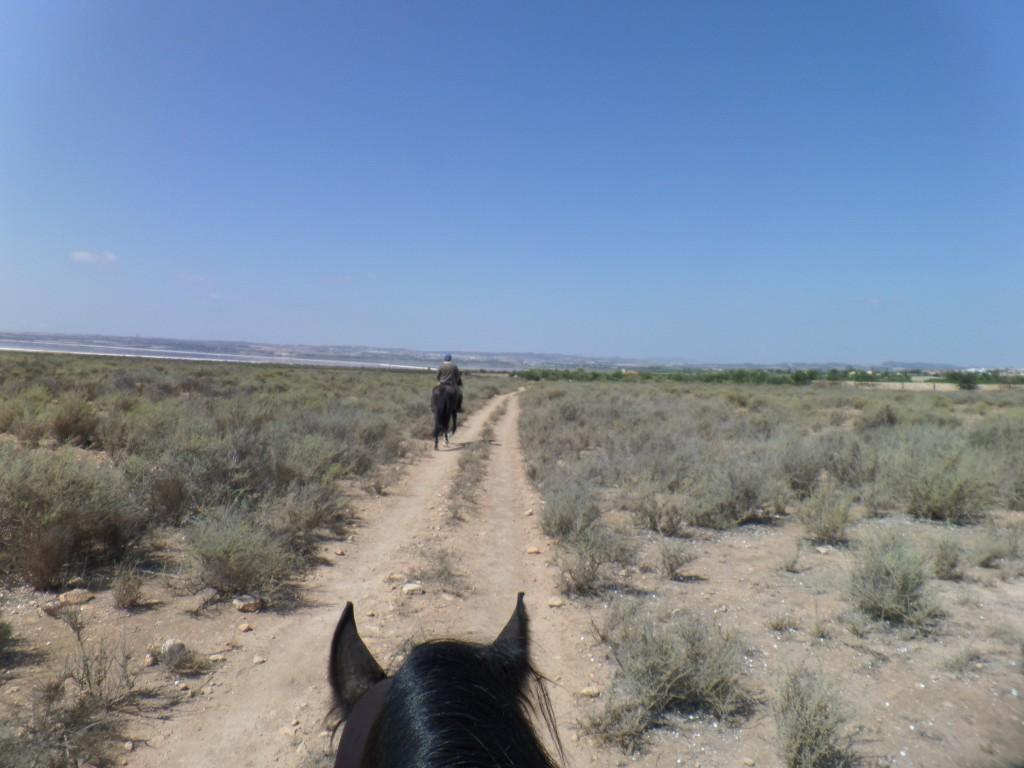 Camino hacia la Laguna Salada o Rosa de Torrevieja