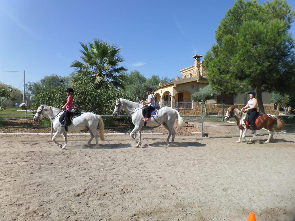 Clases de equitación, verano 2015